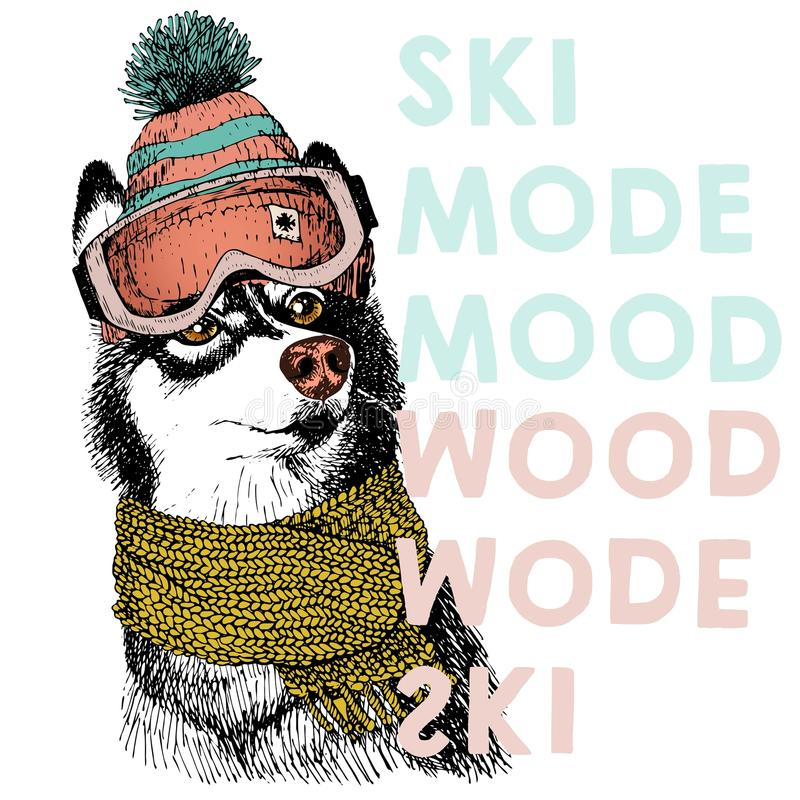 Vector el cartel con cierre encima del retrato del perro del husky siberiano Humor del modo del esquí libre illustration
