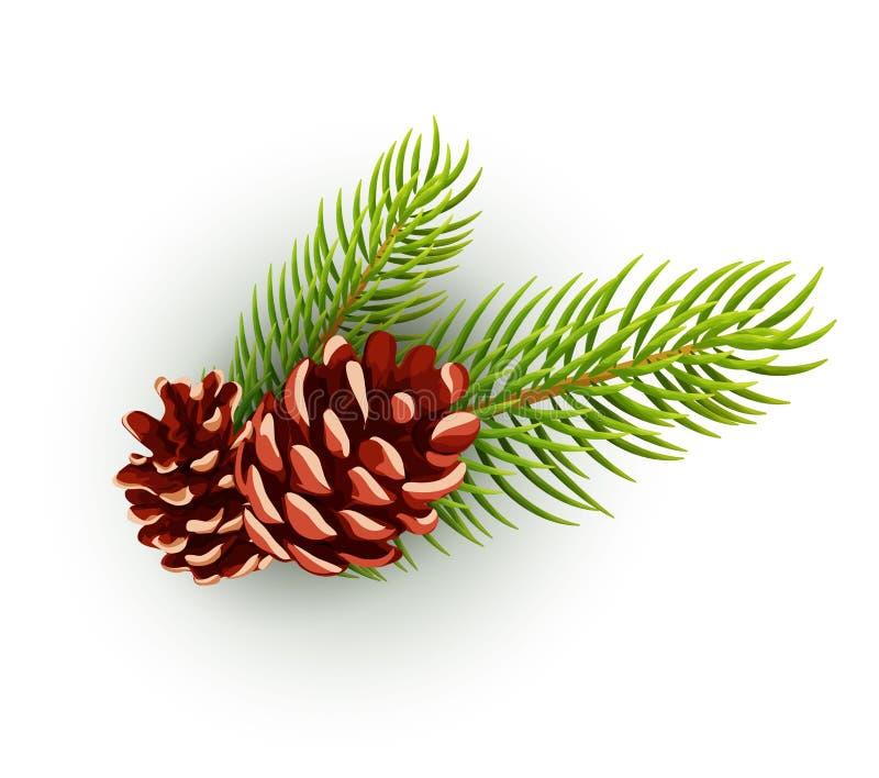 Vector el cono del pino, rama de árbol spruce, abeto stock de ilustración