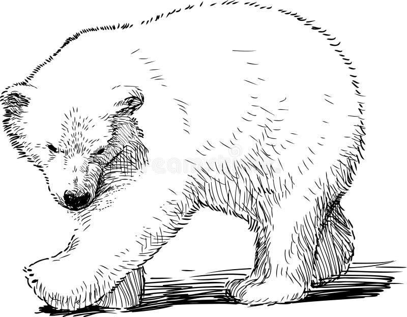Pequeño oso polar stock de ilustración