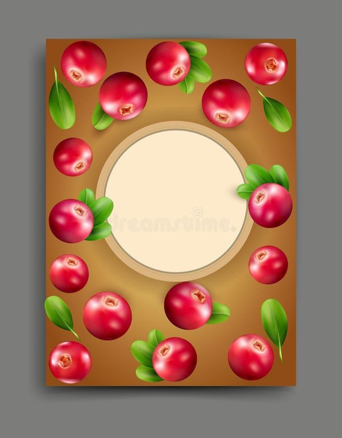 Vector el ejemplo con el arándano realista aislado con el marco libre illustration
