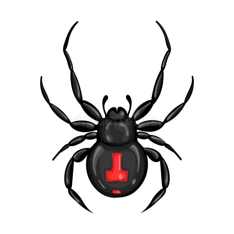 Vector el ejemplo con una araña la viuda negra stock de ilustración