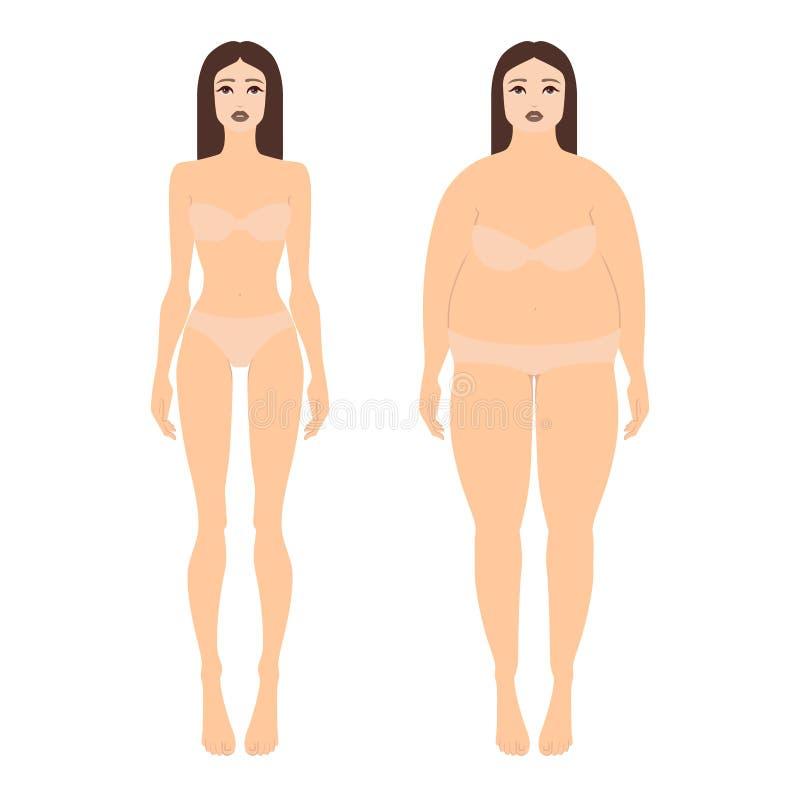 Vector el ejemplo de dos mujeres con diversas figuras en ropa interior Forma completa femenina del cuerpo en el estilo plano, vis stock de ilustración
