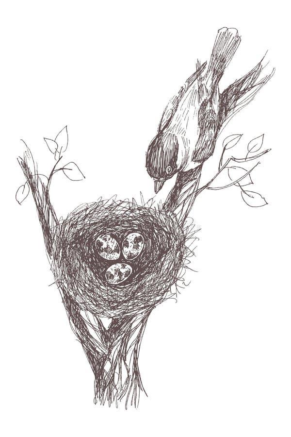 Vector el ejemplo de la jerarquía dibujada mano con los huevos y el pájaro manchados Estilo retro gráfico, ejemplo hermoso stock de ilustración