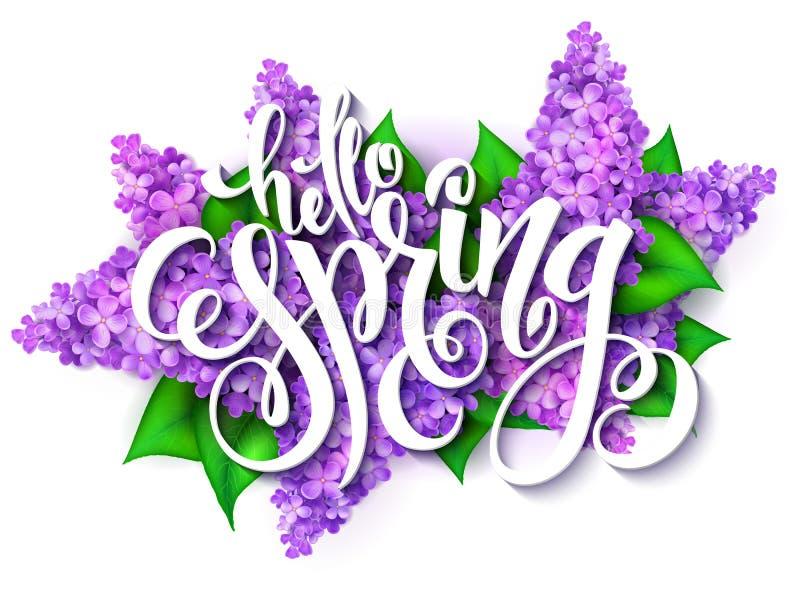Vector el ejemplo de las letras de la mano - hola primavera en un fondo de las ramas florecientes de la lila libre illustration
