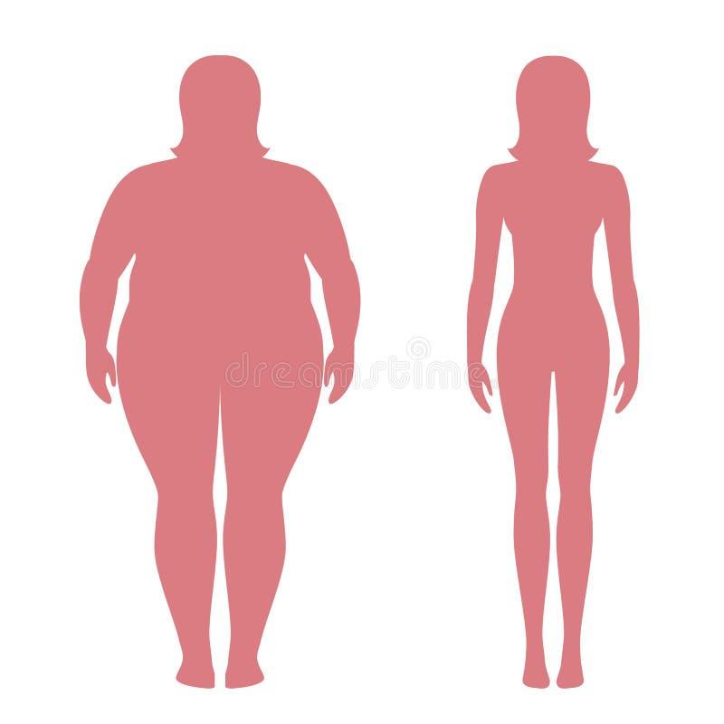Vector el ejemplo de las siluetas gordas y delgadas de la mujer Concepto de la pérdida de peso Cuerpo femenino obeso y normal stock de ilustración