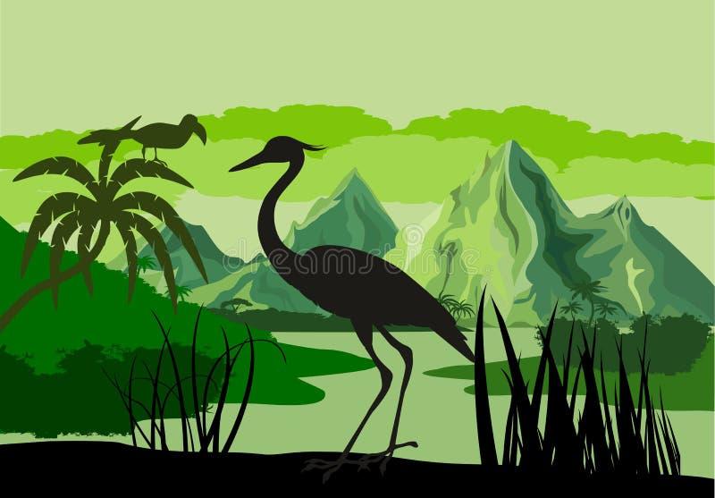 Vector el ejemplo del lago tropical con las montañas, los árboles e Ibis en humedal de la selva tropical de la selva imagen de archivo
