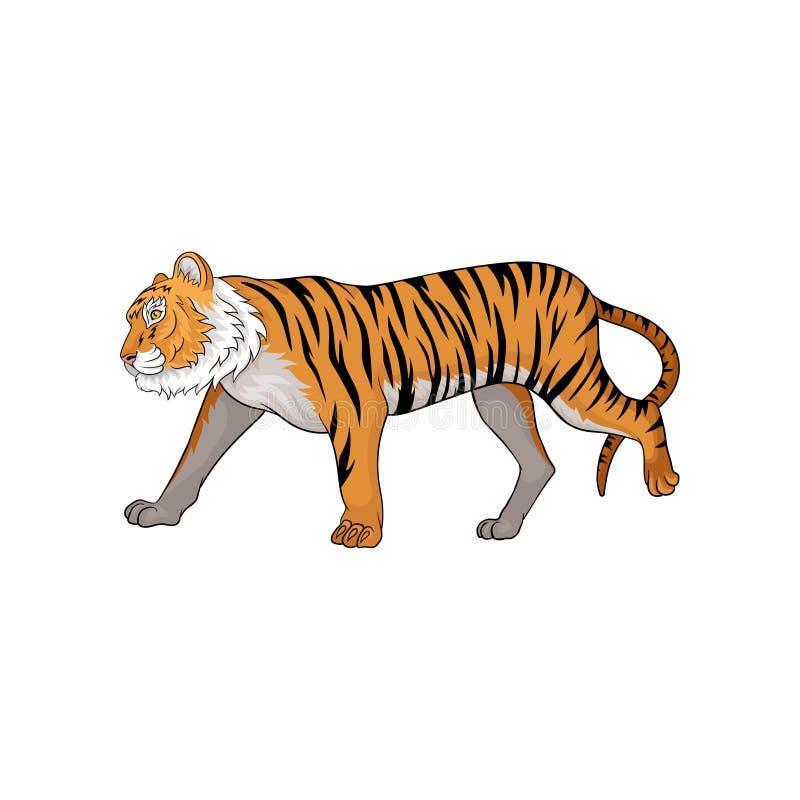 Vector el ejemplo del tigre corriente, vista lateral Animal con la piel y las rayas negras anaranjadas Gato salvaje grande libre illustration