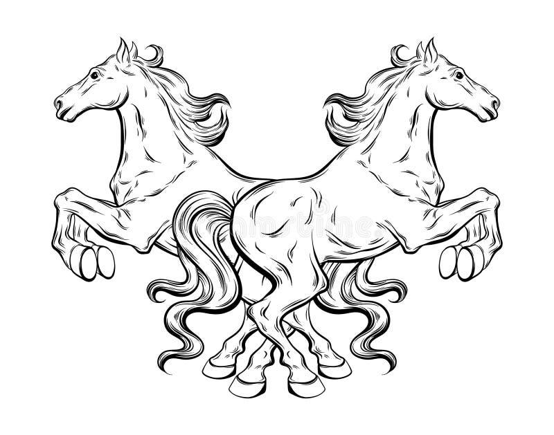 Vector el ejemplo dibujado mano de los caballos expresivos aislados stock de ilustración