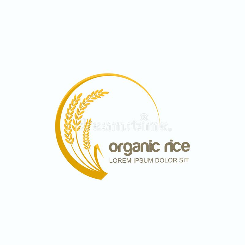 Vector el logotipo, etiquételo o emblema con el arroz, trigo, granos del centeno Diseñe la plantilla para la agricultura asiática stock de ilustración