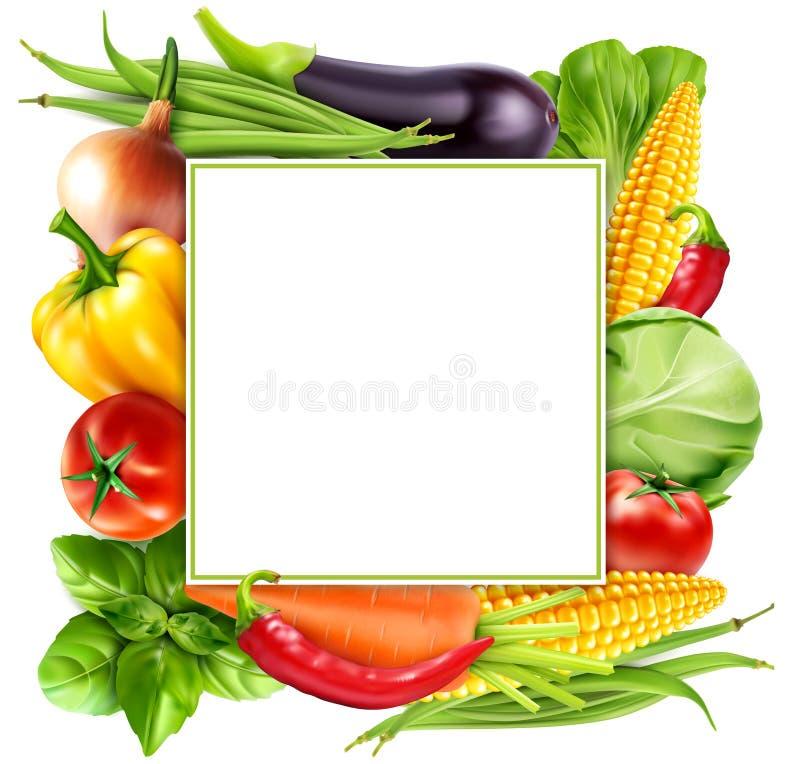Vector el modelo con las zanahorias de las verduras, col, albahaca del menú, a stock de ilustración