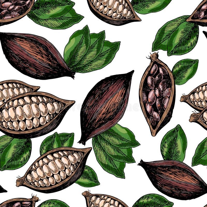 Vector el modelo inconsútil de los granos y de las hojas de cacao Arte grabado coloreado dibujado mano stock de ilustración
