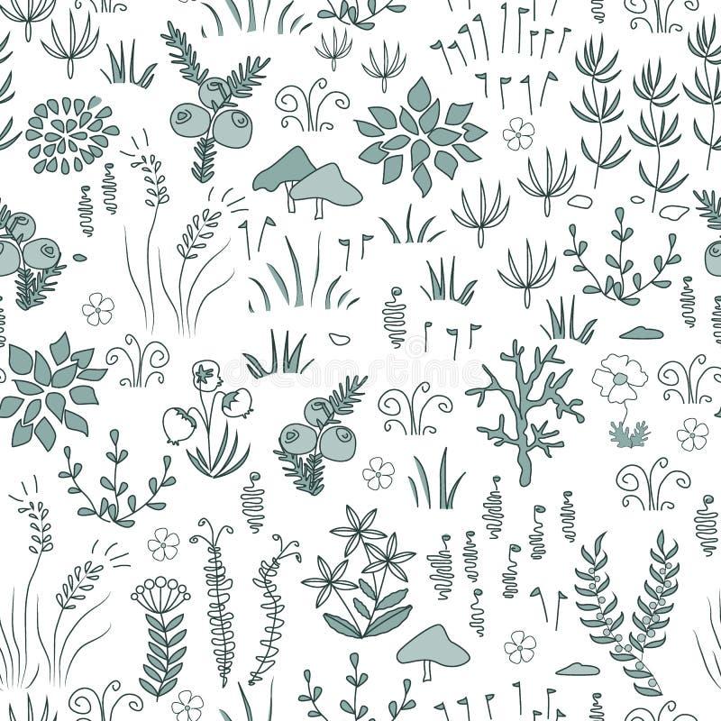 Vector el modelo inconsútil floral moderno con los elementos septentrionales de la flora Tundra, diseño nórdico ilustración del vector