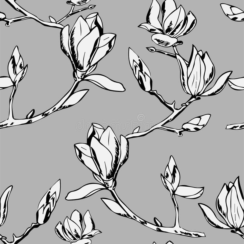 Vector el modelo inconsútil Ornamento de ramitas de las flores de la magnolia libre illustration