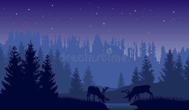 Vector el paisaje de dos ciervos en un bosque en la noche con el fondo y el cielo azul marino con las estrellas ilustración del vector