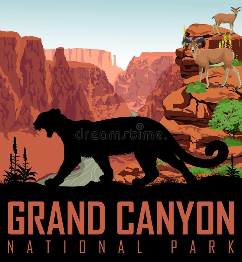 Vector el río Colorado en el parque nacional de Grand Canyon con el león de montaña y las ovejas de carnero con grandes cuernos stock de ilustración