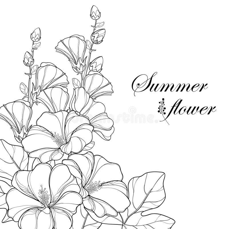 Vector el ramo con rosea del Alcea del esquema o la flor de la malvarrosa ilustración del vector