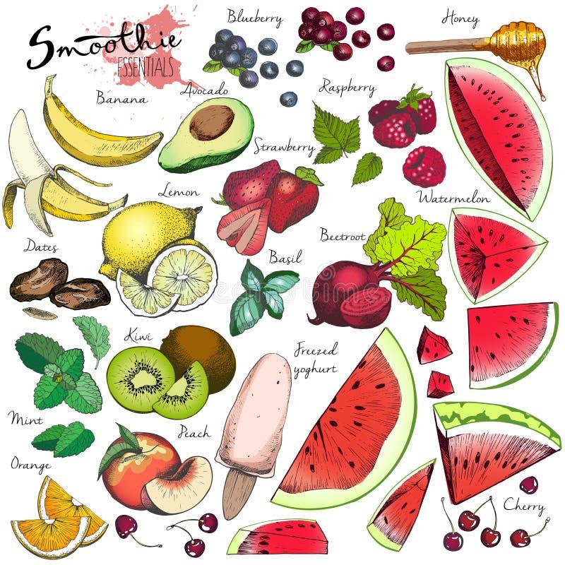 Vector el sistema grande de las frutas y verduras para el smoothie del detox Elementos coloreados grabados dibujados mano ilustración del vector