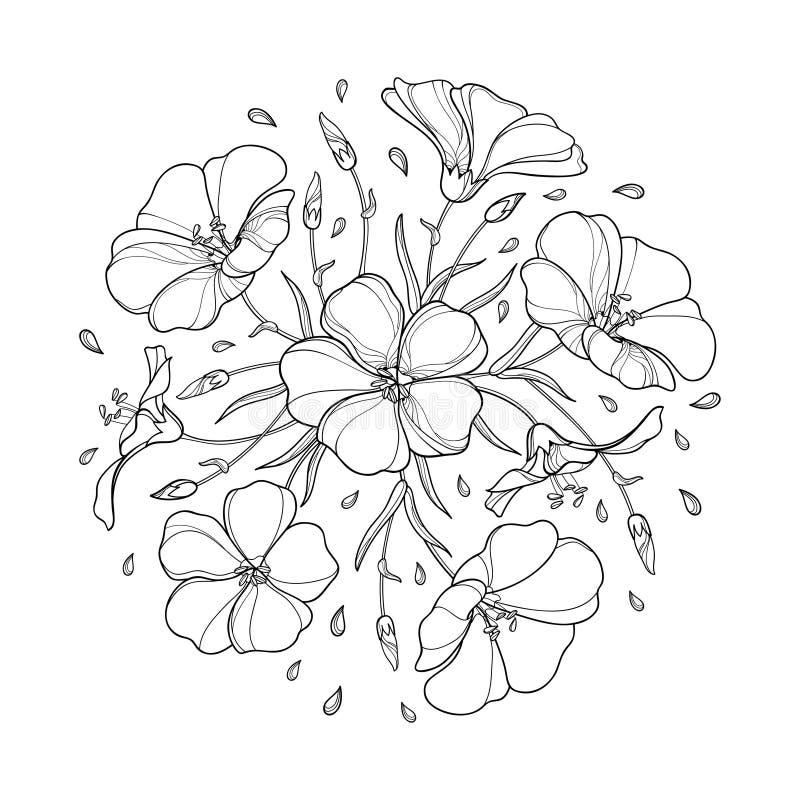 Vector em volta do ramalhete com a planta do linho do esboço ou a linhaça ou o Linum Floresça o grupo, o botão e a folha preta is ilustração royalty free