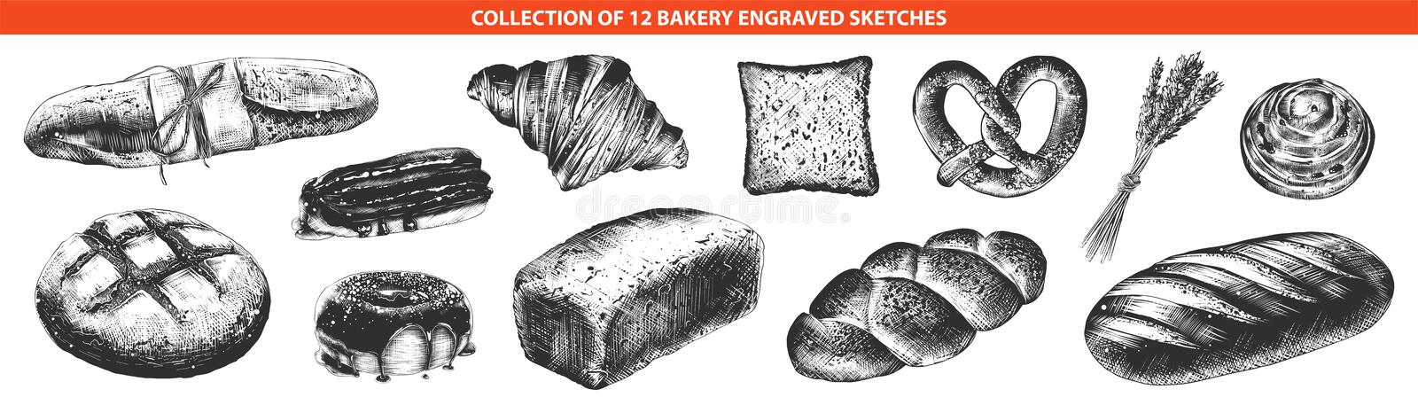 Hand drawn sketches of monochrome isolated on white background. Detailed vintage woodcut style drawing. Vector engraved style bakery and bread collection for stock illustration