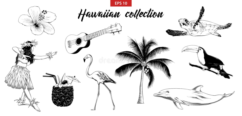 Vector engraved style illustration for logo, emblem, label or poster. Hand drawn sketch set of Hawaiian girl, ukulele guitar, etc. Isolated on white background royalty free illustration