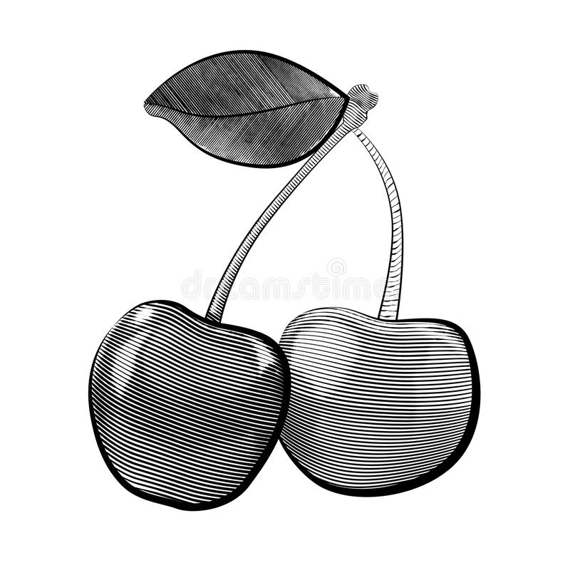 Vector engraving illustration of pair of cherries with leaf. Black and white etching illustration. The object is separated from the background. Vector element stock illustration