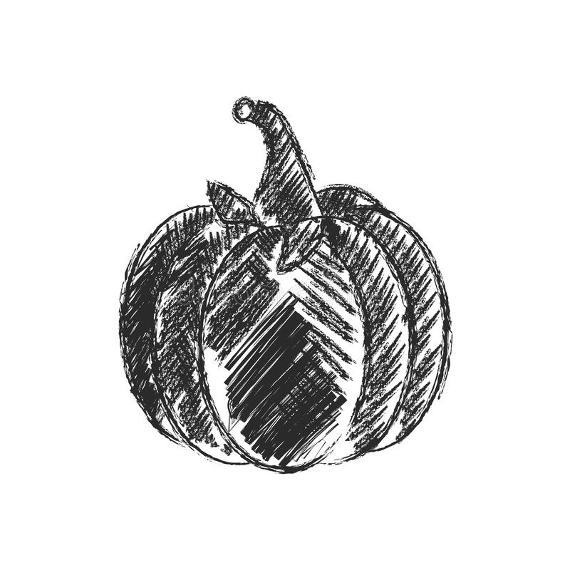Vector Enige Schetspompoen royalty-vrije illustratie