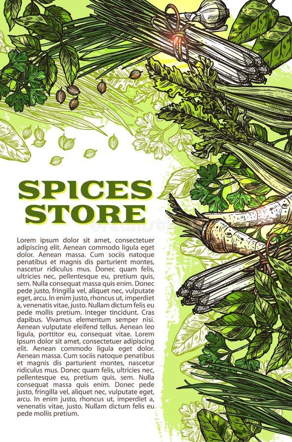 Vector especiarias do esboço e as ervas cultivam o cartaz da loja ilustração royalty free