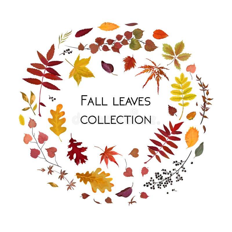 Vector a estação floral do outono do projeto de cartão do estilo da aquarela: colorf ilustração stock