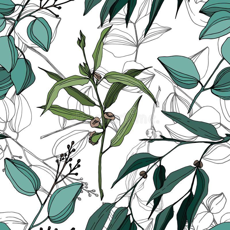 Vector Eucalyptus tree leaves jungle botanical. Black and white engraved ink art. Seamless background pattern. royalty free illustration