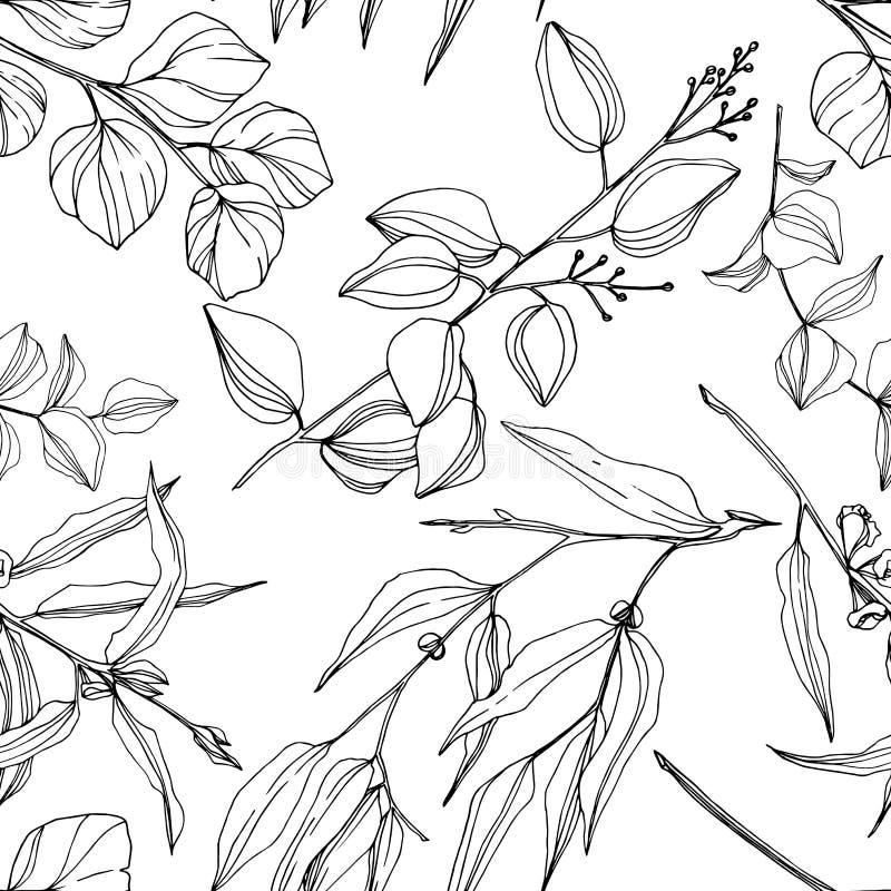 Vector Eucalyptus tree leaves jungle botanical. Black and white engraved ink art. Seamless background pattern. vector illustration