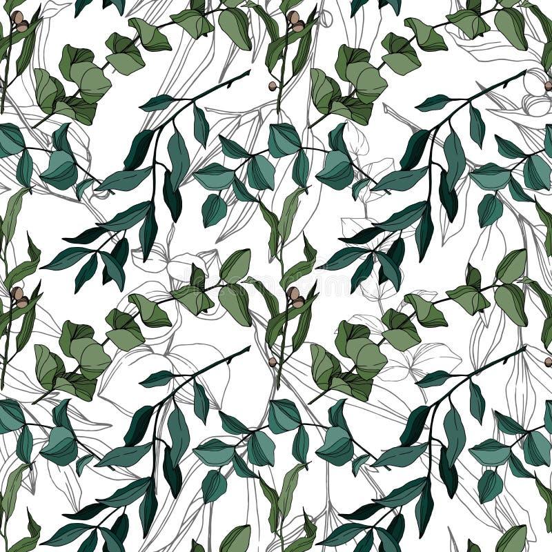 Vector Eucalyptus tree leaves jungle botanical. Black and white engraved ink art. Seamless background pattern. stock illustration