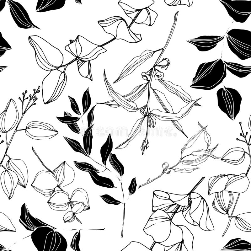 Vector Eucalyptus tree leaves jungle botanical. Black and white engraved ink art. Seamless background pattern. vector illustration