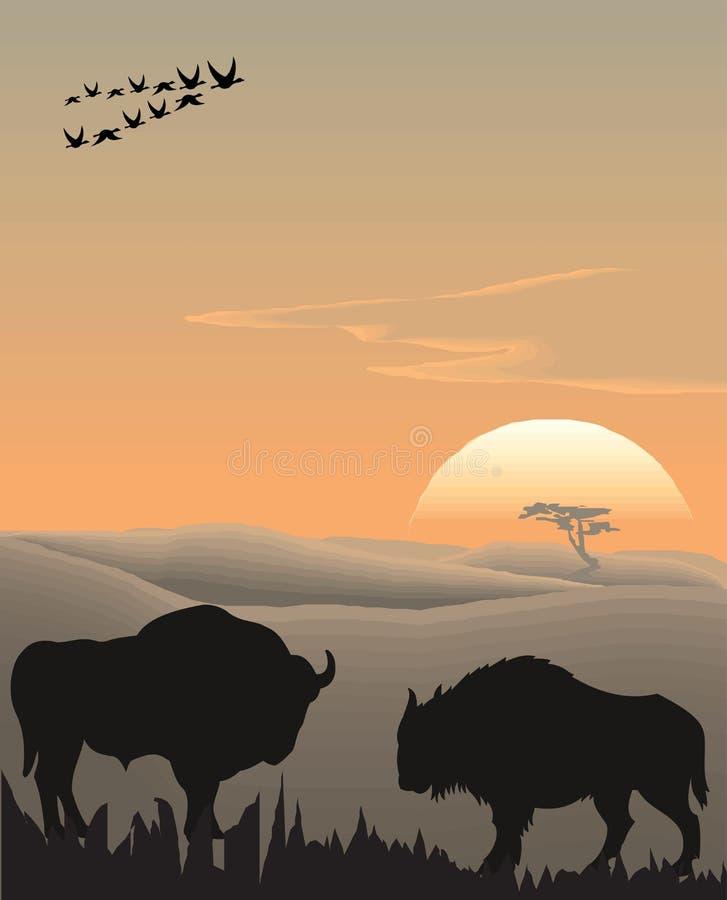 Vector evening landscape illustration royalty free illustration