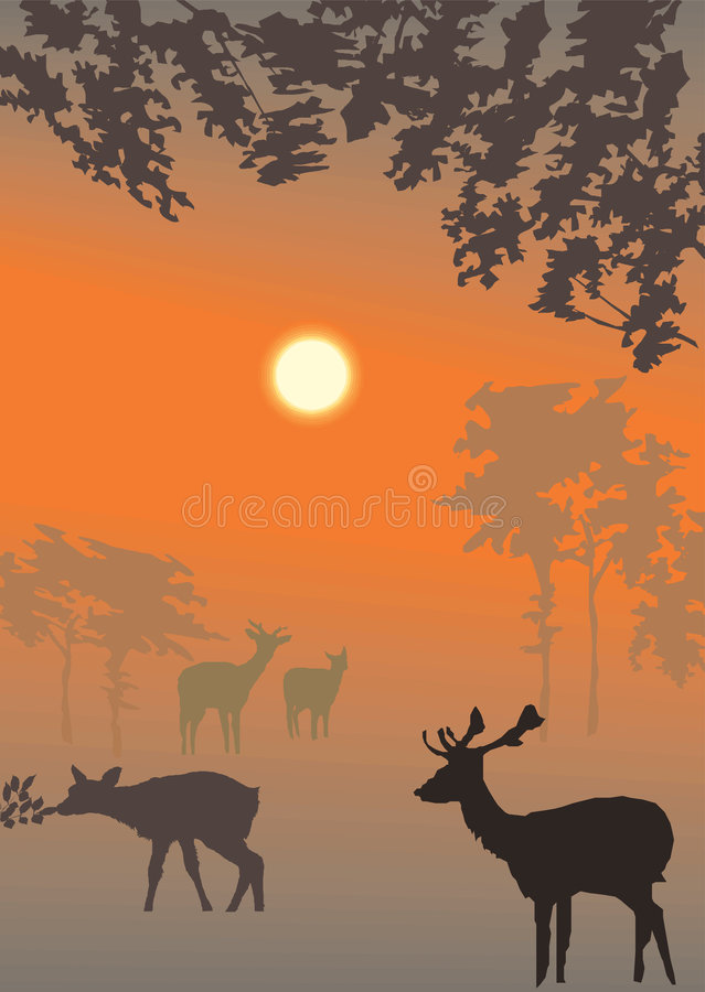 Vector evening landscape illustration stock illustration