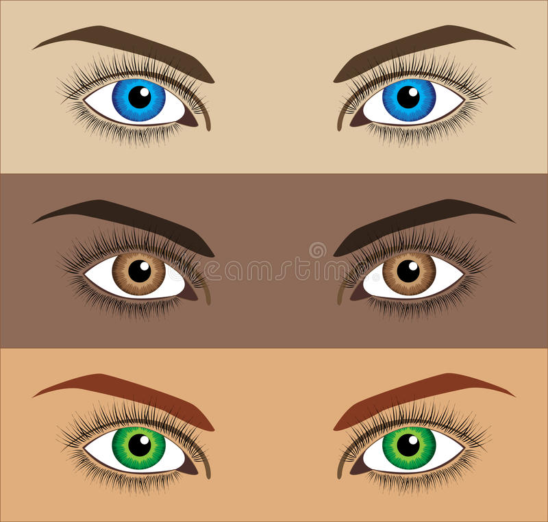 Vector Eyes Stock Image