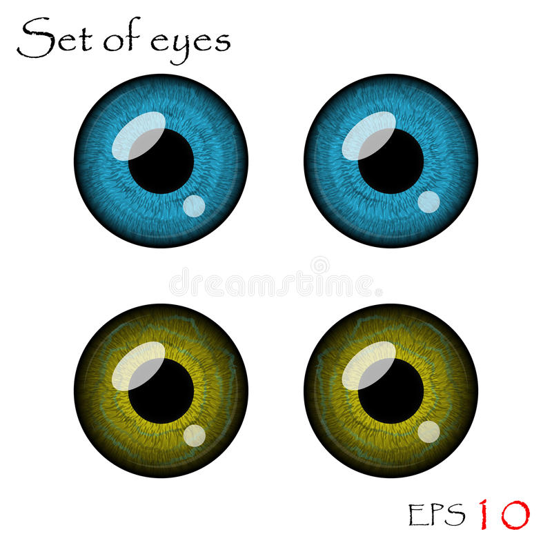 Vector eyes collection. Beautiful pupils of eyes. Vector eyes collection royalty free illustration