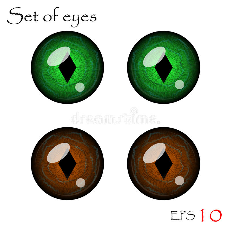 Vector eyes collection. Beautiful pupils of eyes. Vector eyes collection vector illustration
