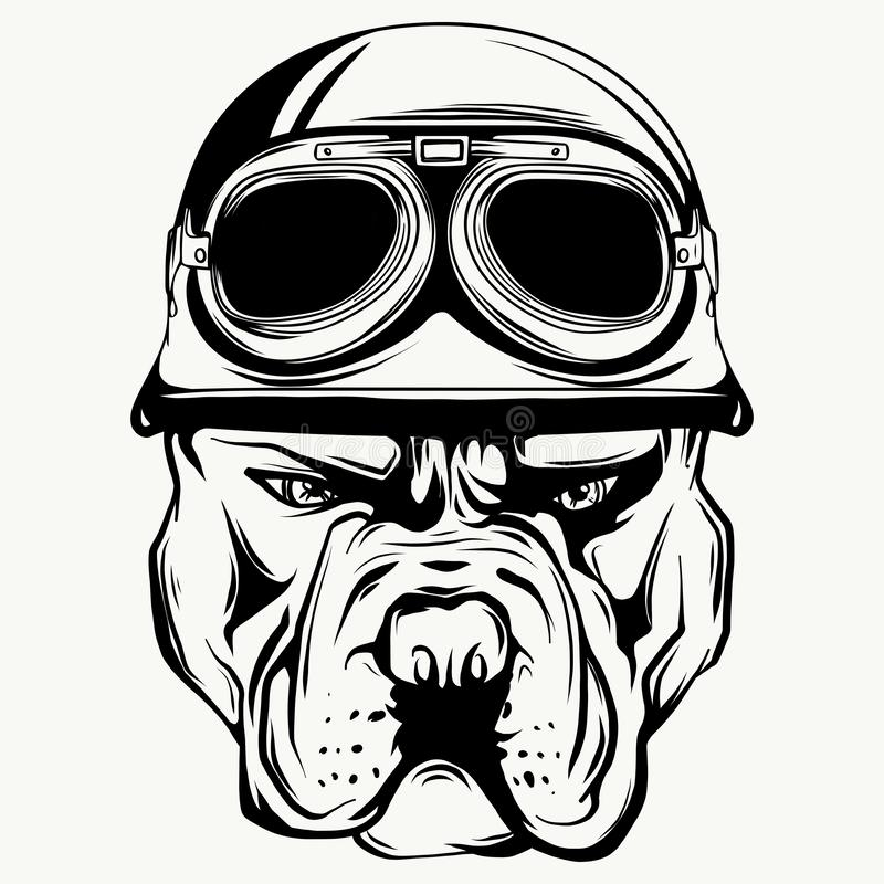 Vector face of bulldog biker with helmet. Motorcycle rider illustration. Shirt graphics. vector illustration