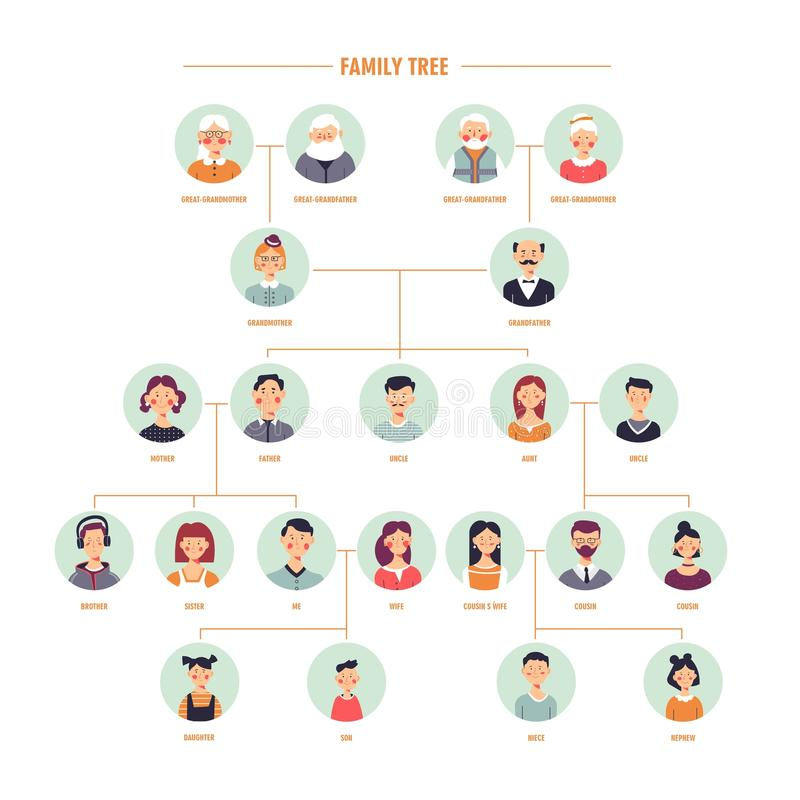 Vector family tree genealogy branches template. Family tree or genealogy history vector template with relatives description on photo frames for family tree album royalty free illustration