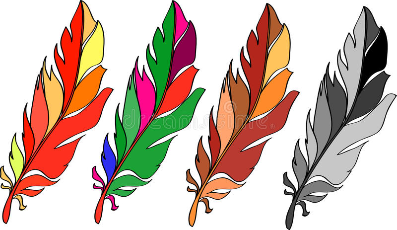 Vector feather stock photo