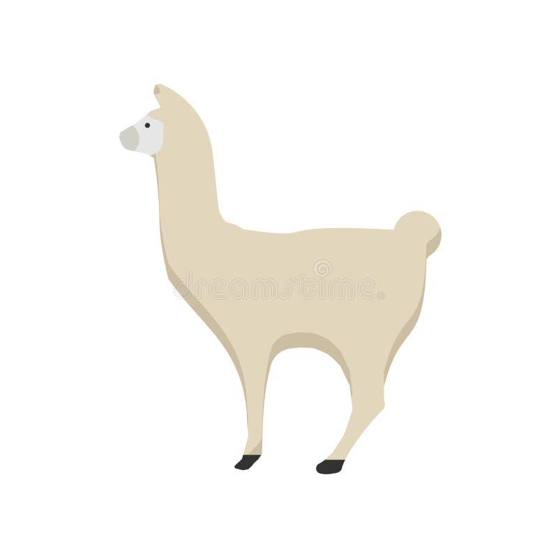 Vector feliz del animal dom?stico de la fauna del mam?fero de la naturaleza de la llama Historieta linda de la alpaca del parque  libre illustration