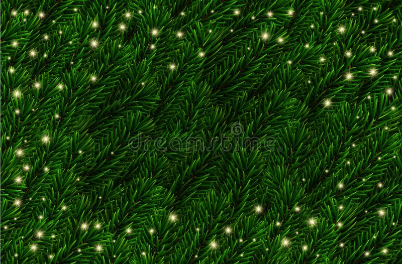 Vector festive Pine Branches background. Fir branches Christmas pattern, lights. Realistic green spruce tree branches. vector illustration