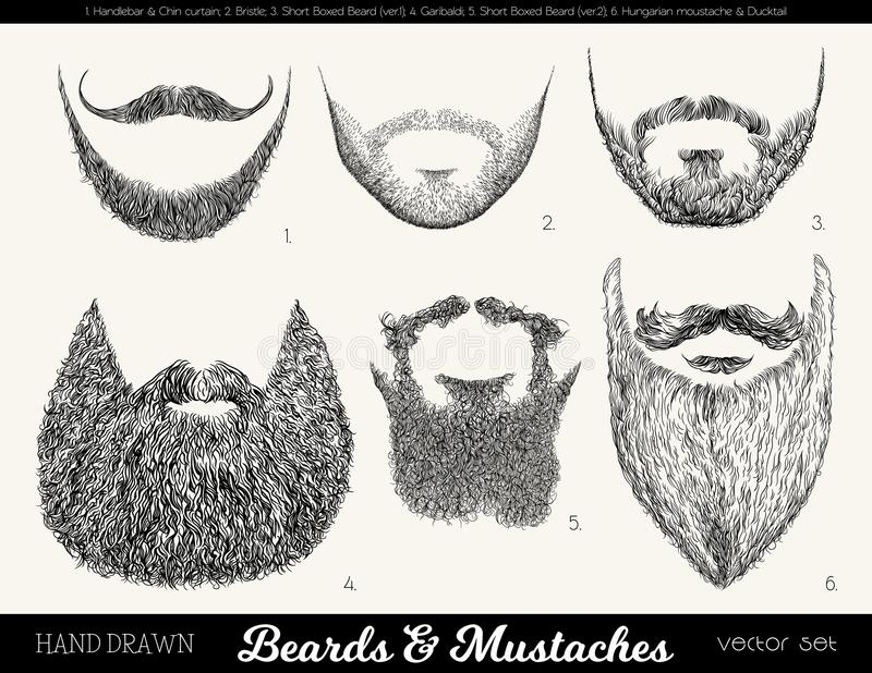 Vector fijado con las barbas y los bigotes libre illustration