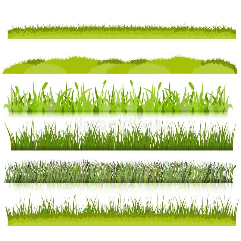 Vector fijado fronteras de la hierba verde ilustración del vector