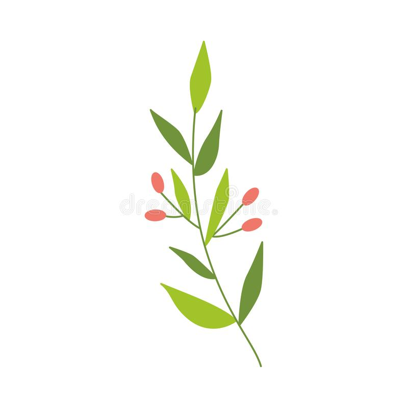 Vector flat abstract green plant with berry icon royalty free illustration