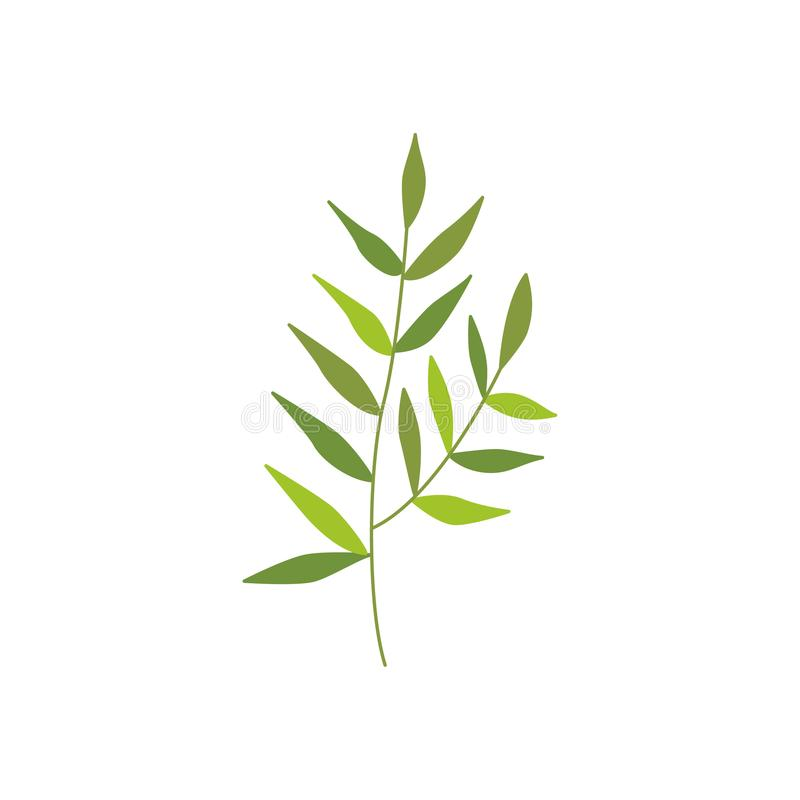 Vector flat abstract green plant icon. Wild meadow field grass garden spring easter, women day romantic holiday, wedding invitation card decoration element royalty free illustration
