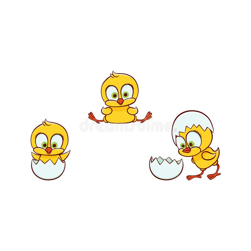 Vector flat cute chick hatching from egg set. Vector flat cute baby chicken small funny chick hatching from egg set. Flat bird animal, isolated illustration on a stock illustration