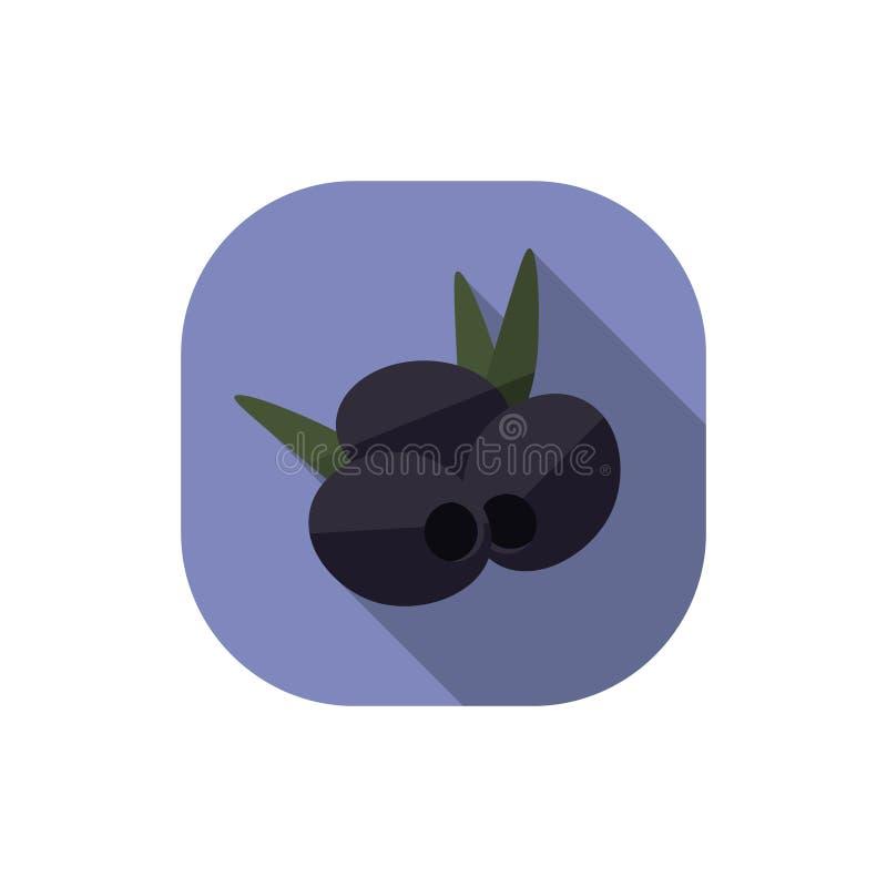 Flat design Black Olives with Leaves. Vector. Flat design. Icon of black olives with leaves vector illustration