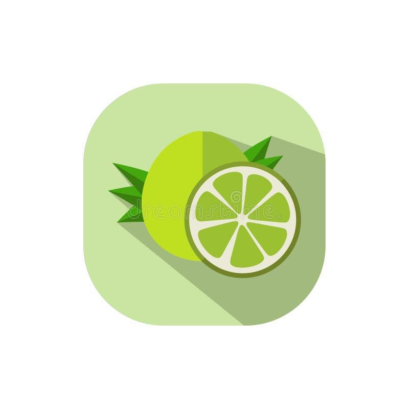 Flat design Pomelo. Vector. Flat design. Icon of green pomelo stock illustration