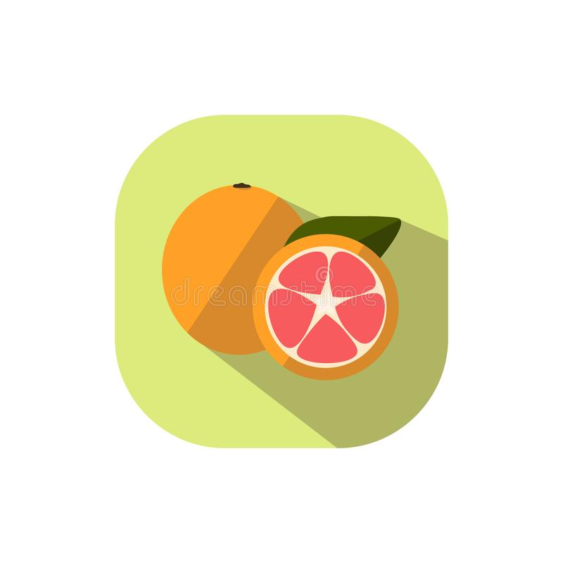 Flat design Pomelo. Vector. Flat design. Icon of orange pomelo royalty free illustration